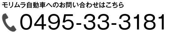 0495-33-3181